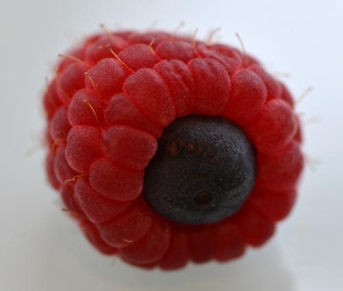 Blazzberrycropped