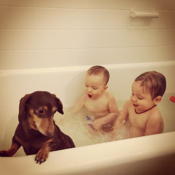 steveinstagram-bathwithgracie